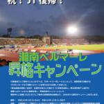 湘南ベルマーレJ1昇格決定!昇格記念キャンペーンで、ウェブ制作初期費用を20%OFF!