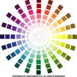 ウェブサイトが介護施設・事業所のカラーを表現する秘訣とは・・・